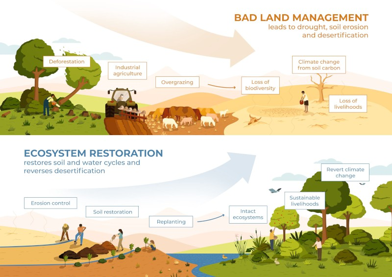Bad Land Management vs Ecosystem Restoration